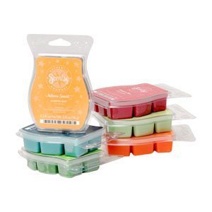 Scentsy bars, bricks