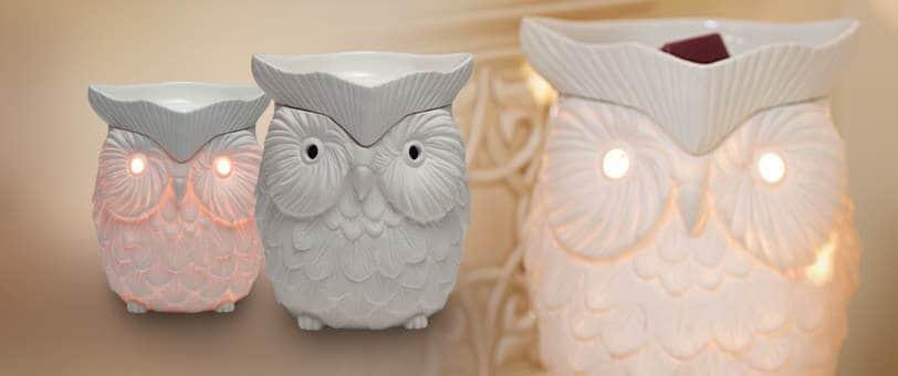 scentsy owl