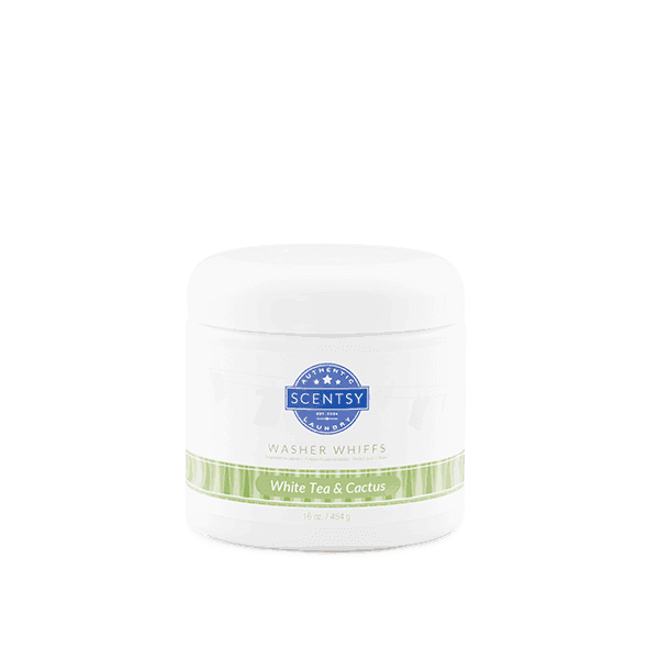 scentsy white tea cactus
