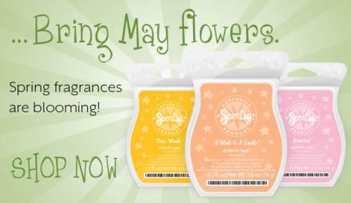 scentsy spring