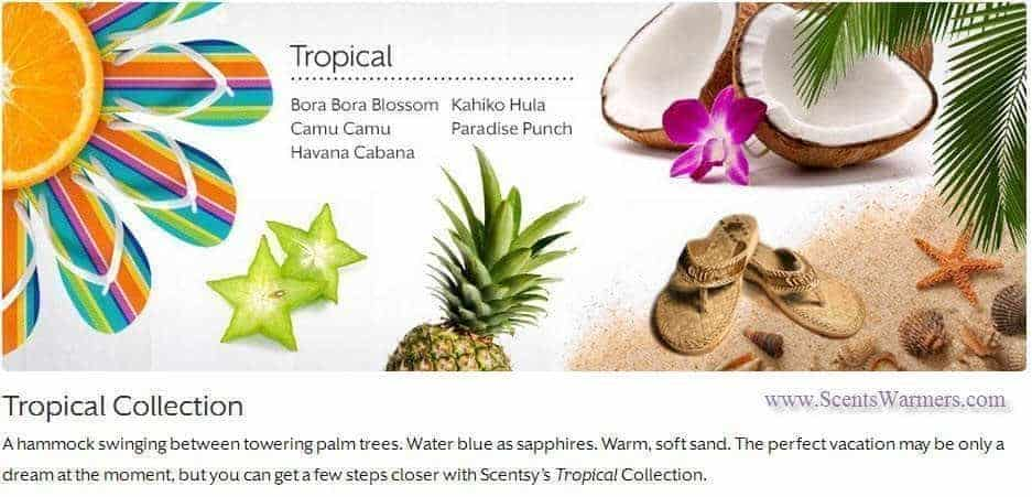 scentsy tropical collection