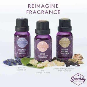 scentsy diffuser oil