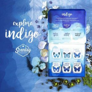 Scentsy indigo scents bars
