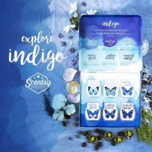 Scentsy indigo scents bars