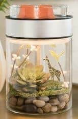 scentsy terrarium warmer