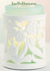Scentsy Entwine