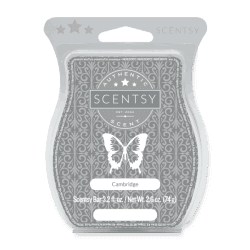 Product Category: Scentsy Bars