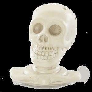 Mr. Bones – LID ONLY