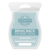 Scentsy Enchanted Mist