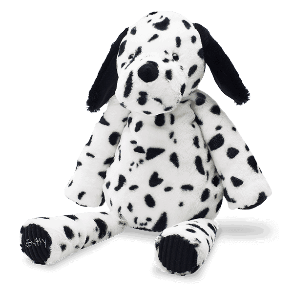 dog dax dalmatian