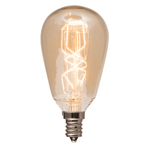 scentsy bulb