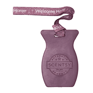 welcome home car bar