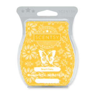 scentsy beach daisy