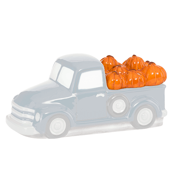 Pumpkin Delivery Lid Only