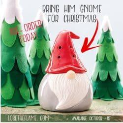 gnome warmer