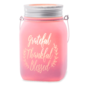pink mason jar warmer