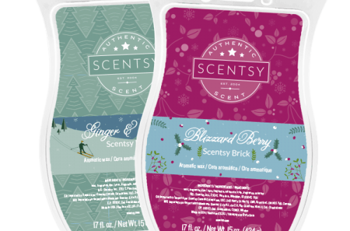 new bricks scentsy bundle
