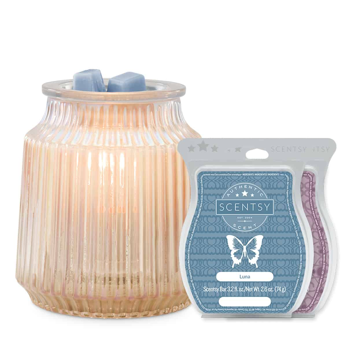 SCENTSY VALENTINES DAY BUNDLE GRAY WARMER