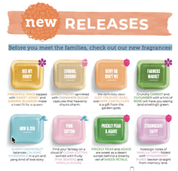 scentsy 2019 fragrances are new