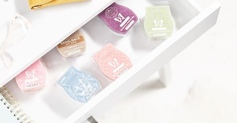 storage boxes for scentsy bars