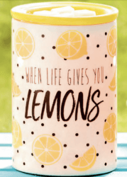 alex lemonade stand warmer