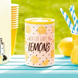 lemonade stand warmer