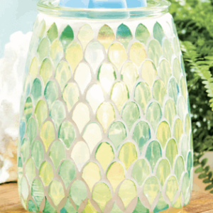 MARCH 2019 WARMER OF THE MONTH