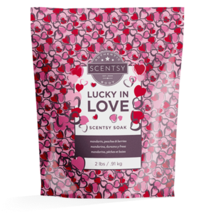 Lucky In Love Scentsy Soaks