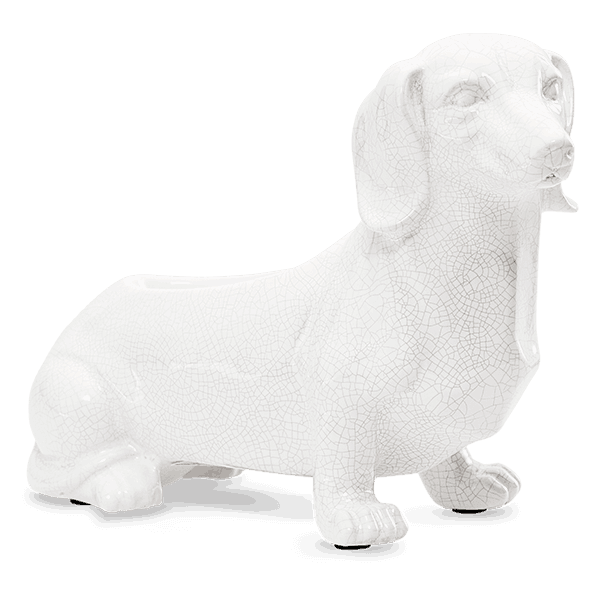 scentsy dog warmer