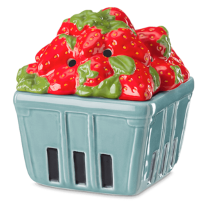 Strawberry Basket Warmer