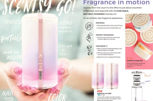 scentsy go package