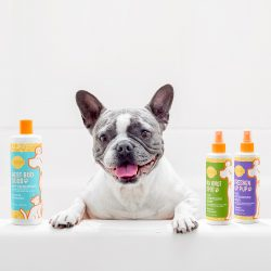 scentsy for pets dog