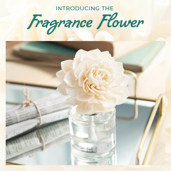 fragrance flower new