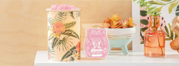 scentsy hawaiian warmer