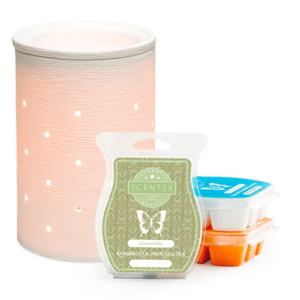 Scentsy System Package with $30 Warmer