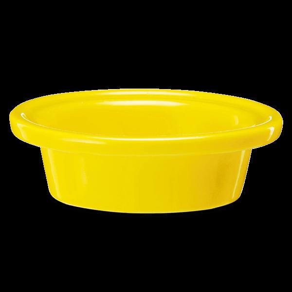 when life gives lemons dish
