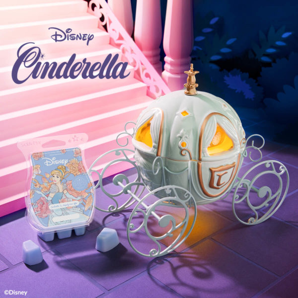 cinderella carriage warmer