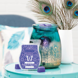 scentsy april peacock warmer