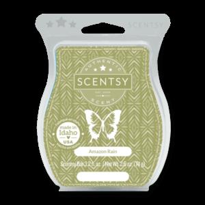 scentsy amazon rain