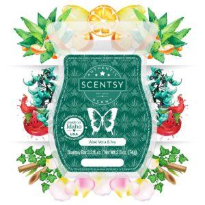 aloe vera ivy scent
