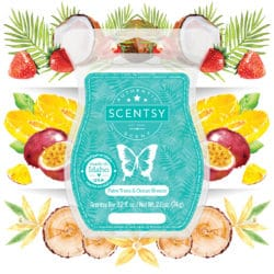may scent of the month scentsy