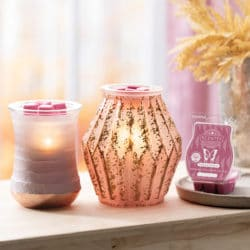 Scentsy Fall Warmers