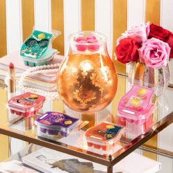 Scentsy glam collection